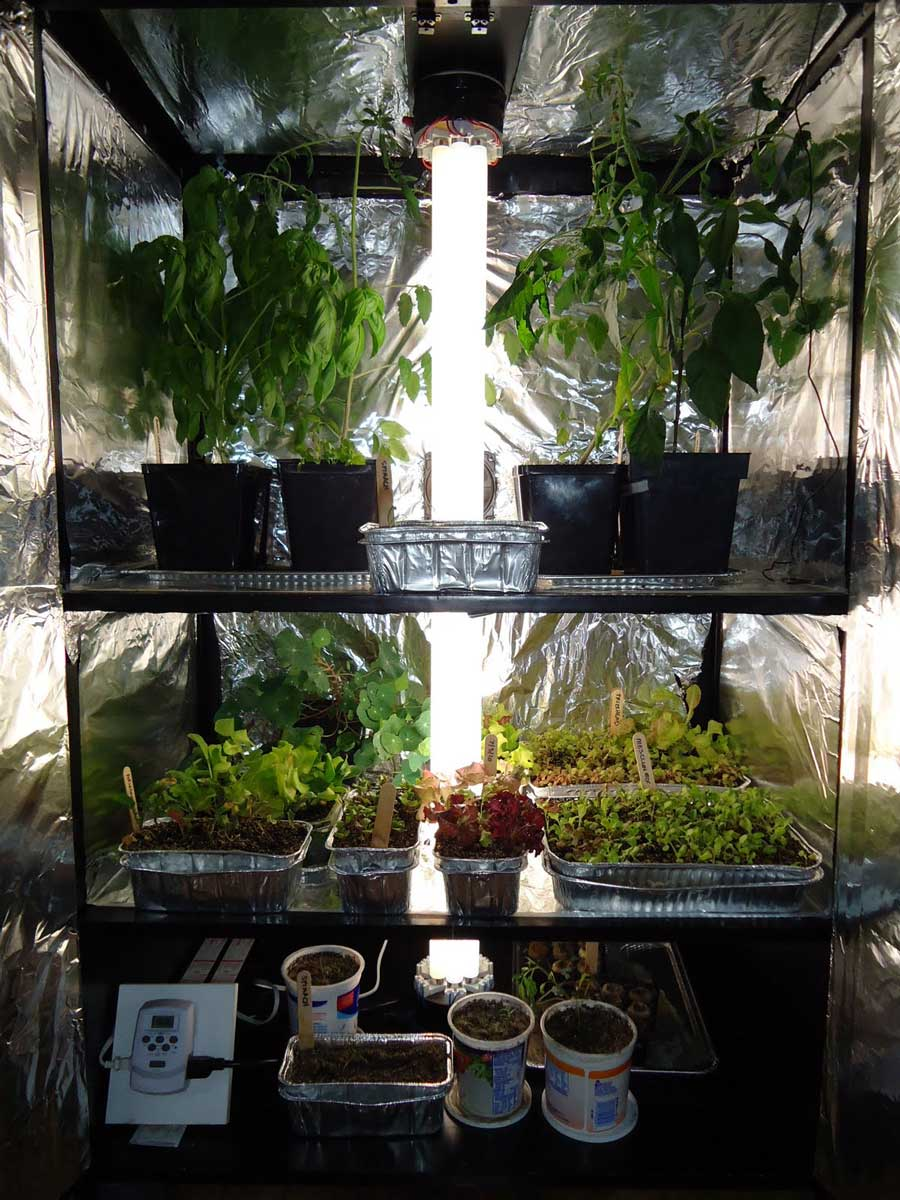growbox1